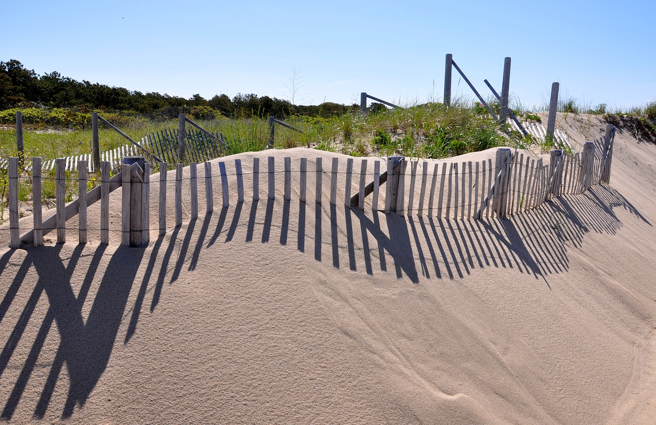 coastal-dunes