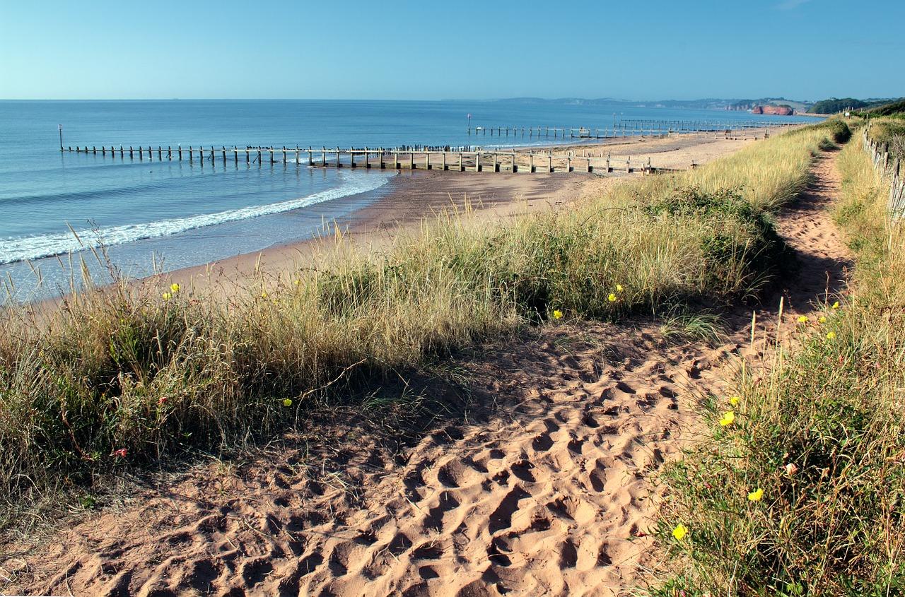 florida-coastal-dunes